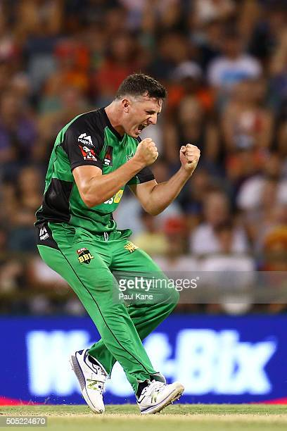 Dan Worrall of the Stars celebrates the wicket of Matt Dixon of the Scorchers and winning the Big Bash League match between the Perth Scorchers and...