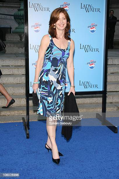 Dana Delany during 'Lady in the Water' New York Premiere Arrivals at American Museum of Natural History in New York New York United States