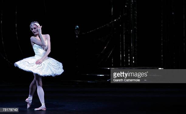 A dancer from The Royal Ballet performs during dress rehearsal for Swan Lake at the Royal Opera House Covent Garden on February 2 2007 in London...