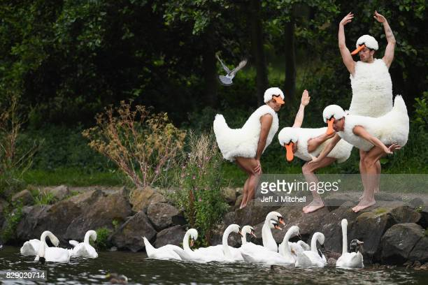 Dancers from 'Tutu' perform at St Margaret's Loch in their spoof Swan Lake costumes on August 10 2017 in Edinburgh Scotland Their Edinburgh Festival...