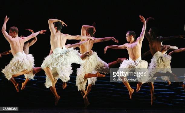 Dancers perform during rehearsal for the Melbourne leg of Matthew Bourne's reinvention of Tchaikovsky's Swan Lake at the Regent Theatre on April 11...