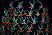 Dancers perform during the opening ceremony for the Nanjing 2014 Summer Youth Olympic Games at the Nanjing Olympic Sports Centre on August 16 2014 in...