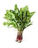 Dandelion, Dandelion Green, Leaf Vegetable on white background