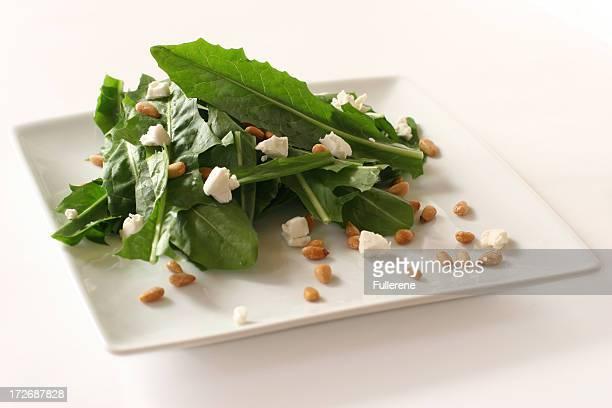 Salada de Dente de Leão