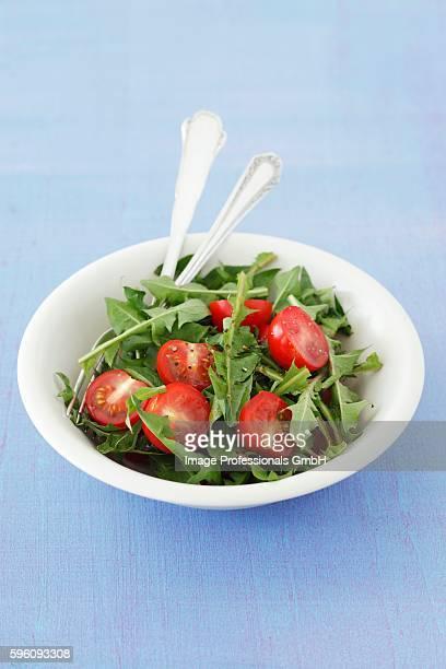 Dandelion salad with cherry tomatoes