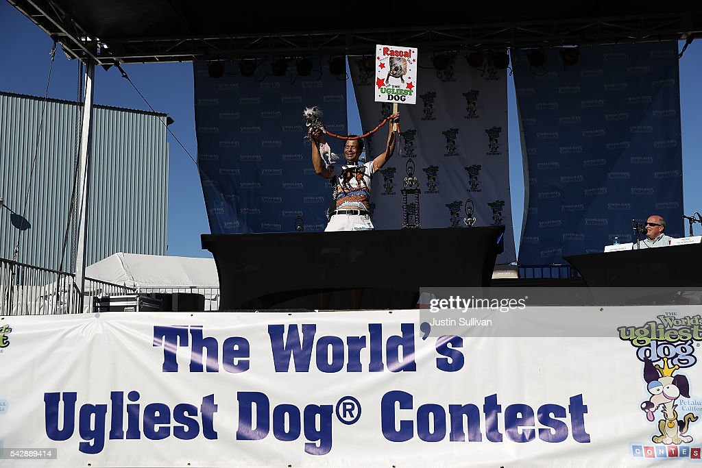 Dane Andrew of Sunnyvale California holds his dog Rascal Deux during the 2016 World's Ugliest Dog contest at the SonomaMarin Fair on June 24 2016 in...