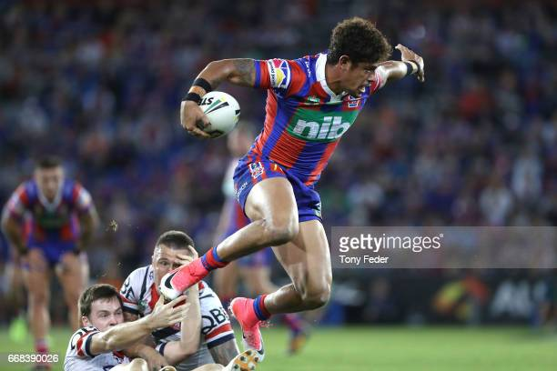 Dane Gagai of the Knights jumps out of a tackle during the round seven NRL match between the Newcastle Knights and the Sydney Roosters at McDonald...