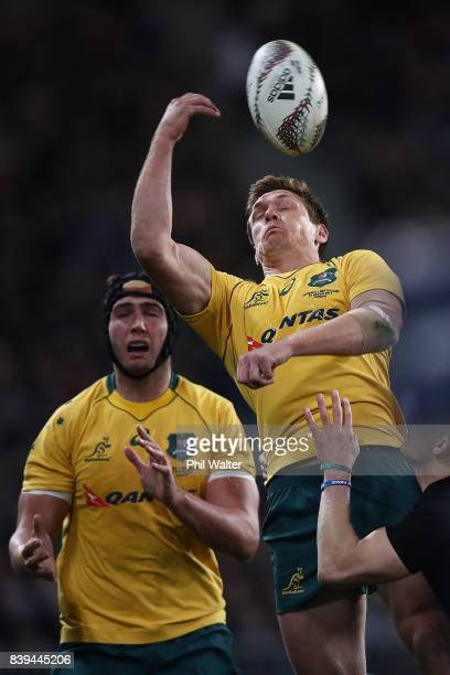 Dane HaylettPetty of the Wallabies looses the ball in the air during The Rugby Championship Bledisloe Cup match between the New Zealand All Blacks...