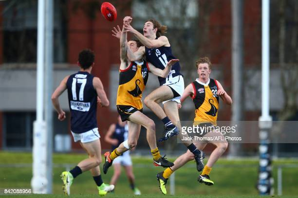 Dane Hollenkamp of the Geelong Falcons and Lachlan Young of the Dandenong Stingrays compete for the ball during the TAC Cup round 18 match between...