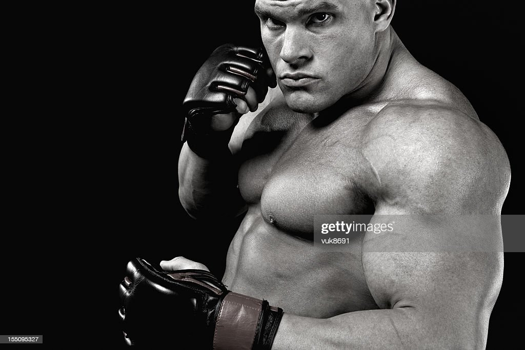 Dangerous fighter : Stock Photo