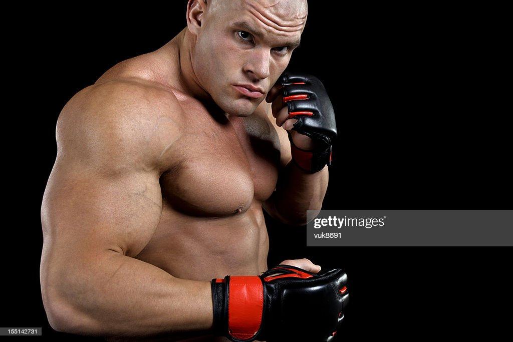 Dangerous fighter : Stock Photo