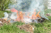 Dangerous grass fire with big flames and cloud of smoke in the city park near building in urban residential district