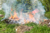 Dangerous grass fire with big flames and cloud of smoke in the city park near building in urban residential district selective focus