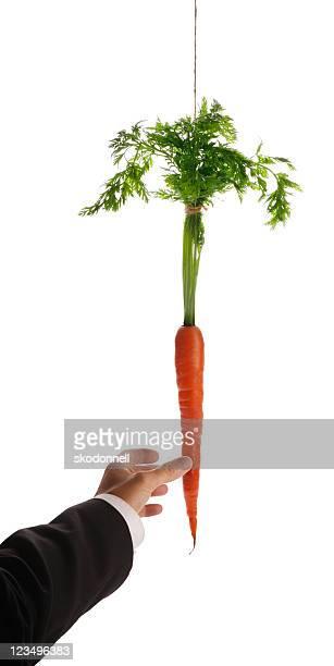 dangling the carrot XXL