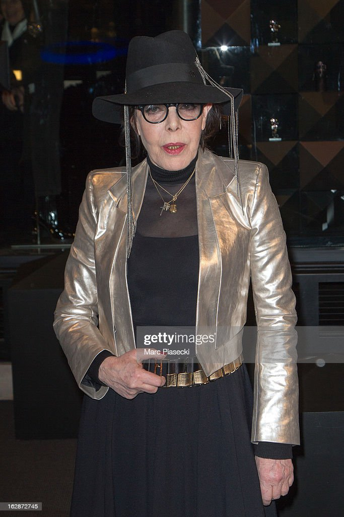 Dani attends the Karl Lagerfeld's Concept Store Opening as part of Paris Fashion Week on February 28, 2013 in Paris, France.