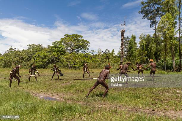 Dani men engaged in a mock battle with long spears in a display of prowess and opulence of dress and decoration Obia Village Baliem Valley Central...