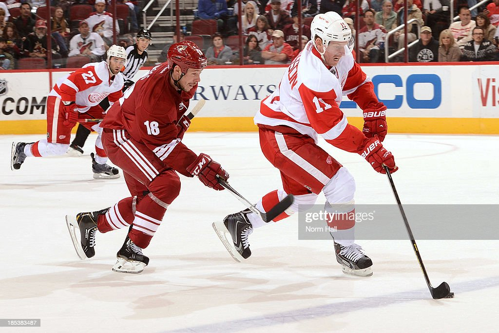 Daniel Alfredsson #11 of the Detroit Red Wings skates with the puck while being chased by David Moss #18 of the Phoenix Coyotes at Jobing.com Arena on October 19, 2013 in Glendale, Arizona.