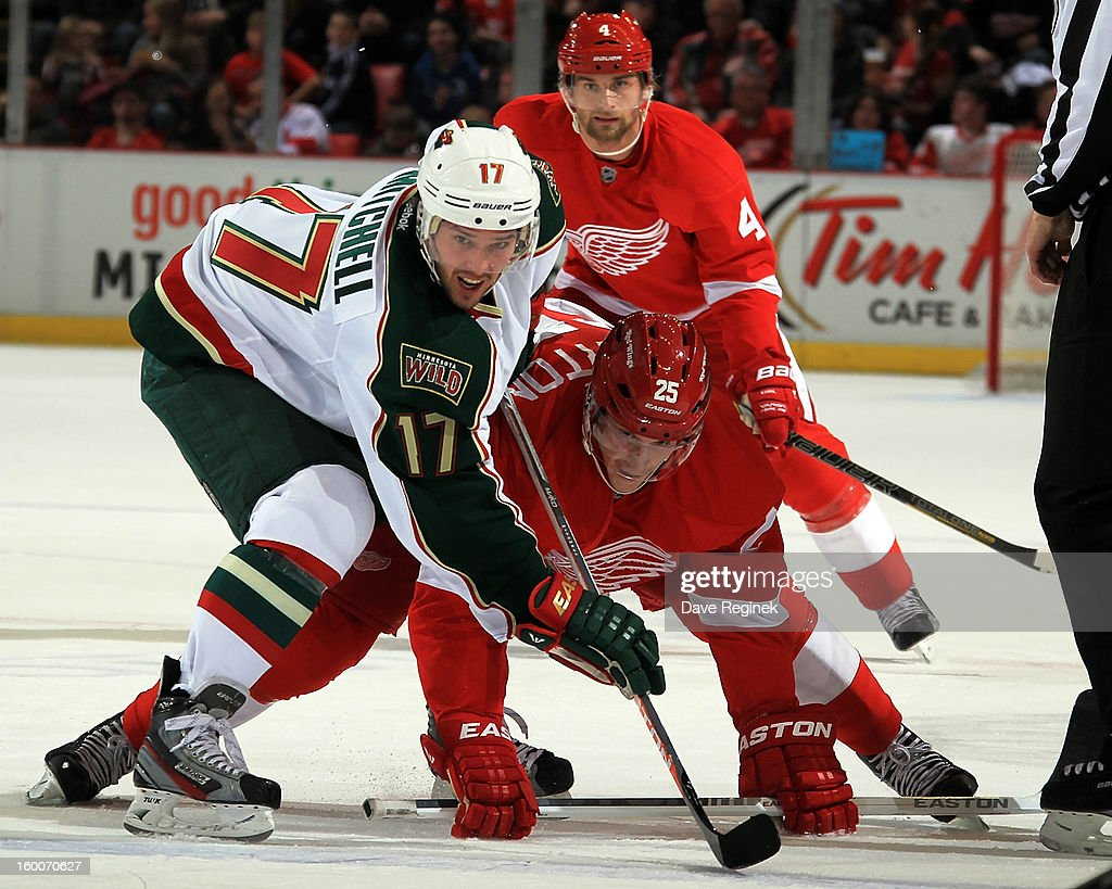 Daniel Cleary #11 of the Detroit Red Wings and Torrey Mitchell #17 of the Minnesota Wild take a face off during a NHL game at Joe Louis Arena on January 25, 2013 in Detroit, Michigan.