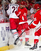 Daniel Cleary of the Detroit Red Wings checks James Wisniewski of the Columbus Blue Jackets into the glass during a NHL game on December 16 2014 at...