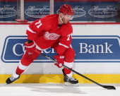Daniel Cleary of the Detroit Red Wings controls the puck against the Washington Capitals during an NHL game at Joe Louis Arena on November 15 2013 in...