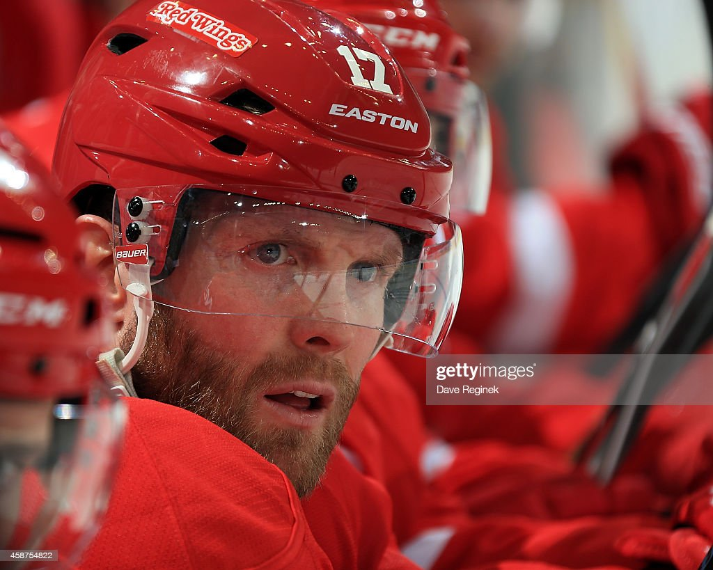 Daniel Cleary of the Detroit Red Wings watches the action from the bench against the New Jersey Devils during a NHL game on November 7 2014 at Joe...