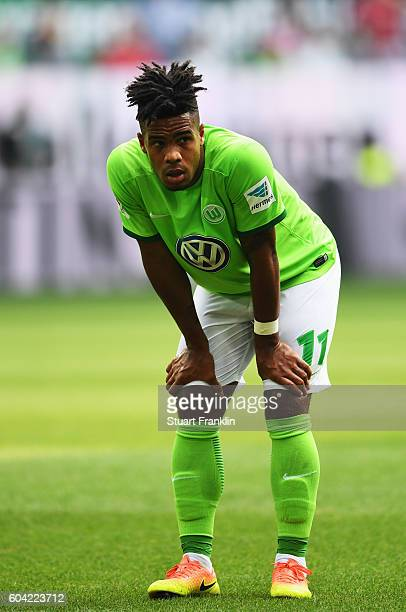 Daniel Didavi of Wolfsburg gestures during the Bundesliga match between VfL Wolfsburg and 1 FC Koeln at Volkswagen Arena on September 10 2016 in...