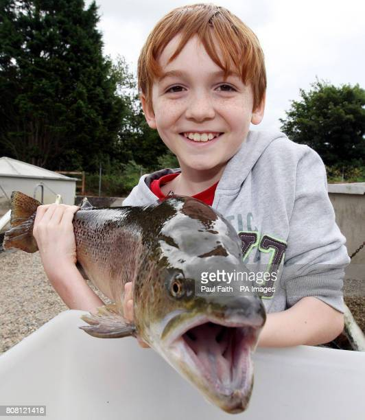 Daniel Faith gets to hold a large Brown Trout at the River Bush Salmon Station Open Day in Bushmills Co Antrim The public were given guided tour of...