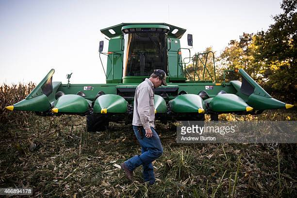 Daniel Graves a 26yearold farmer who would be directly effected by the proposed Keystone XL pipeline collects stray ears of corn while harvesting...