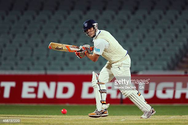 Daniel Hughes of the Blues bats during day three of the Sheffield Shield match between South Australia and New South Wales at Adelaide Oval on...