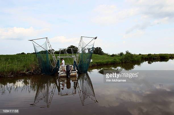 Daniel May readies his small shrimping skiff before a run through a bayou on August 16 2010 near DuLarge Louisiana Today marks the beginning of the...