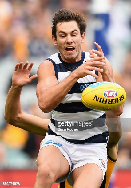 Daniel Menzel of the Cats attempts to mark during the round four AFL match between the Hawthorn Hawks and the Geelong Cats at Melbourne Cricket...