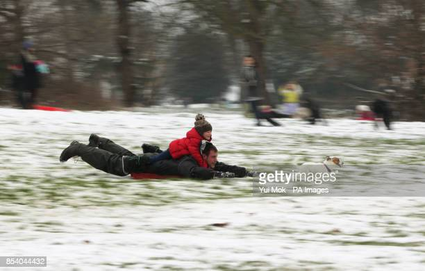 Daniel Poplar with his daughter Isabella and their dog a mini Jack Russell named Pince sledging in the snow at Alexandra Palace in north London