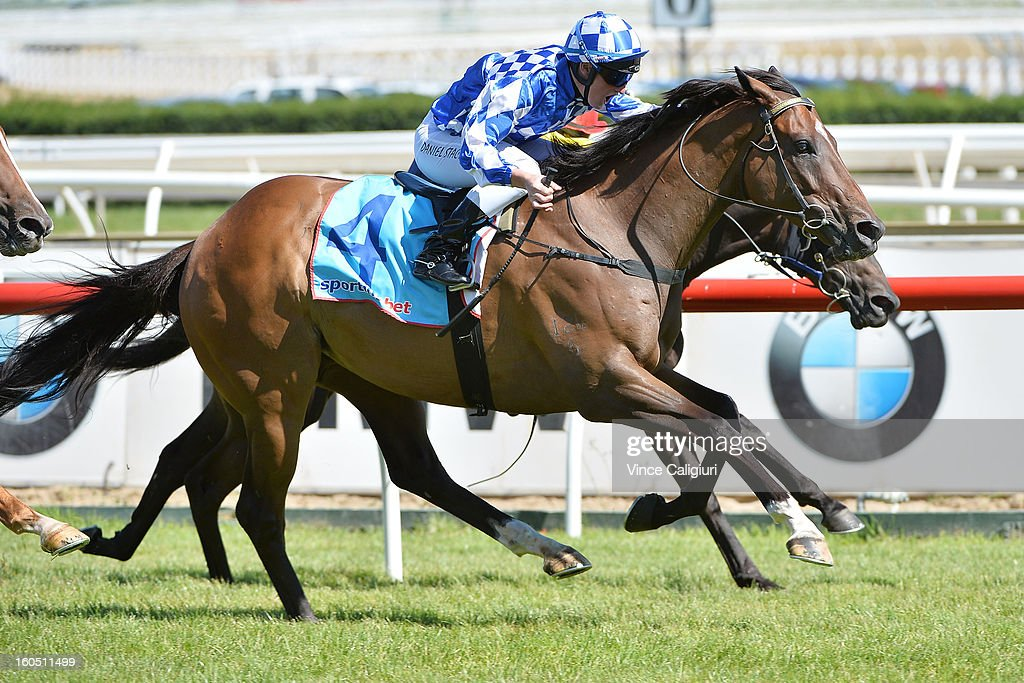 Daniel Stackhouse riding Future Solution wins the Swettenham Stud Summer Championship Final during National Jockey's Trust Race Day at Caulfield Racecourse on February 2, 2013 in Melbourne, Australia.