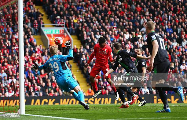 Daniel Sturridge of Liverpool scores their second goal with a header past goalkeeper Jakob Haugaard of Stoke City during the Barclays Premier League...
