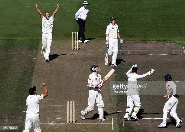Daniel Vettori of New Zealand celebrates his wicket of Simon Katich of Australia during one of the Second Test match between New Zealand and...