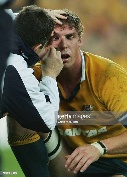 Daniel Vickerman of the Wallabies has a contact lens replaced by medical staff during the Tri Nations series Bledisloe Cup match between the...