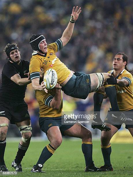 Daniel Vickerman of the Wallabies takes a lineout ball during the Tri Nations Bledisloe Cup match between the Australian Wallabies and the New...
