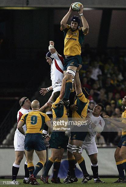 Daniel Vickerman of the Wallabies wins a line out during the Second Cook Cup match between the Australian Wallabies and England at the Telstra Dome...