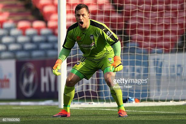Daniel Vukovic of Sydney FC in goal during the round nine ALeague match between the Newcastle Jets and Sydney FC at McDonald Jones Stadium on...