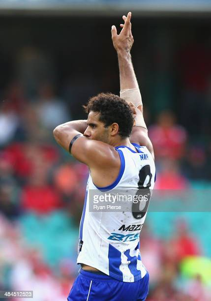 Daniel Wells of the Kangaroos celebrates a goal during the round four AFL match between the Sydney Swans and the North Melbourne Kangaroos at Sydney...