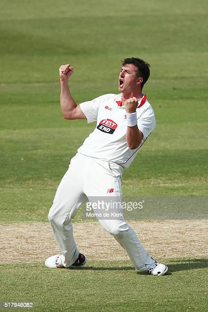 Daniel Worrall of the Redbacks celebrates after getting the wicket of Rob Quiney of the VIC Bushrangers during day 4 of the Sheffield Shield Final...