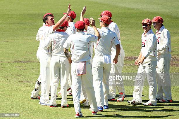 Daniel Worrall of the Redbacks celebrates the wicket of Cameron Bancroft of the Warriors during day three of the Sheffield Shield match between...