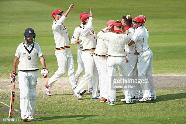 Daniel Worrall of the Redbacks celebrates with teammates after getting the wicket of Rob Quiney of the VIC Bushrangers during day 4 of the Sheffield...