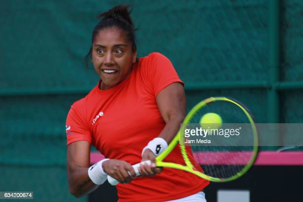 Daniela Seguel of Chile takes a shot during the second day of the Tennis Fed Cup American Zone Group 1 at Club Deportivo La Asuncion on February 07...