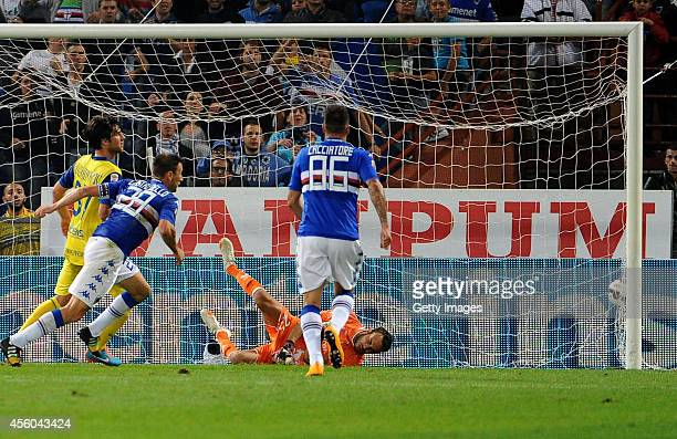 Daniele Gastaldello of UC Sampdoria scores the opening goal during the Serie A match between UC Sampdoria and AC Chievo Verona at Stadio Luigi...