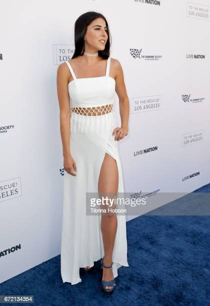 Daniella Monet attends the Humane Society's annual 'To The Rescue' Gala on April 22 2017 in Los Angeles California