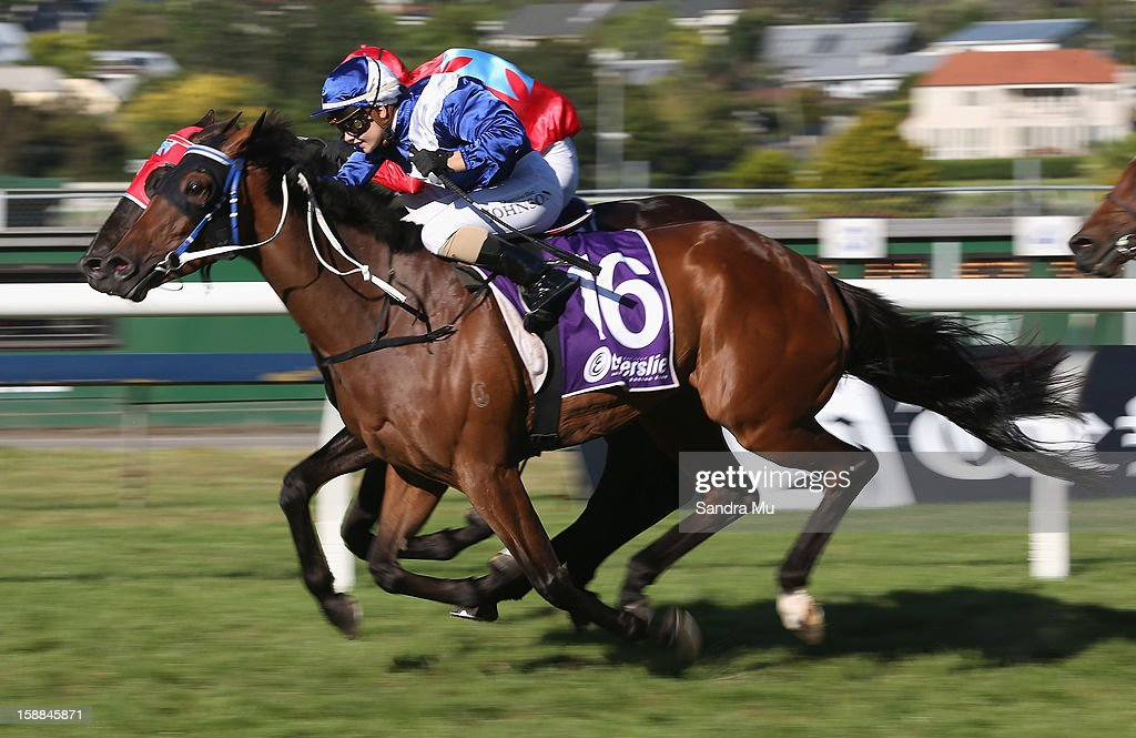 Danielle Johnson rides Hiace to win the Lindauer City of Auckland Cup at Ellerslie Racecourse on January 1, 2013 in Auckland, New Zealand.