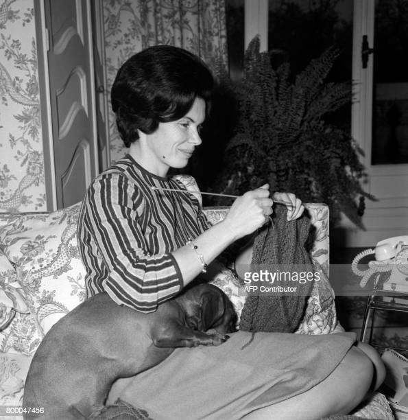 Danielle Mitterrand wife of French leftist Federation leader and candidate to the Presidential elections François Mitterrand knites while her dog...