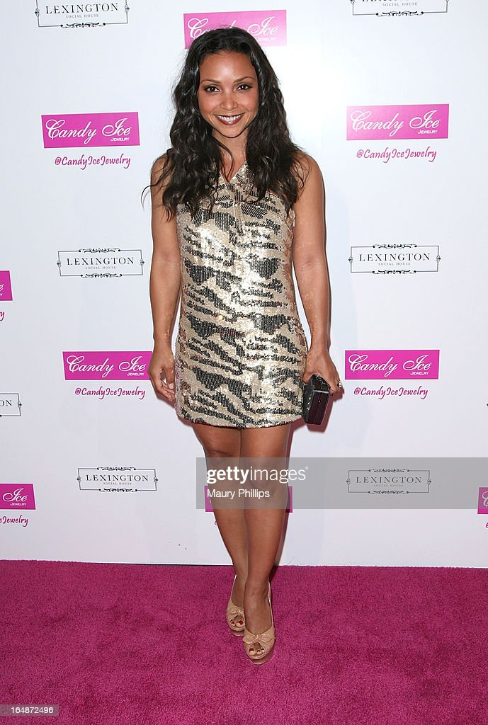 Danielle Nicolet attends Fire & Ice Gala Benefiting Fresh2o at Lexington Social House on March 28, 2013 in Hollywood, California.