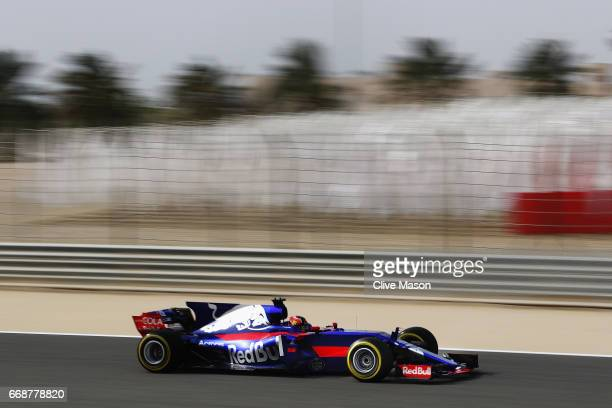 Daniil Kvyat of Russia driving the Scuderia Toro Rosso STR12 on track during final practice for the Bahrain Formula One Grand Prix at Bahrain...